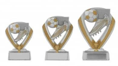 Fußballpokale 3er Serie C152