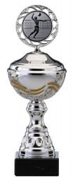 Pokale 6er Serie S466 silber/gold mit Deckel