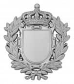 Königsabzeichen 8 matt silber