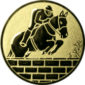 Emblem 25mm Springreiter Mauer, gold