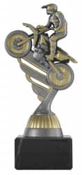 Motocrosspokal PF236 altsilber/gold