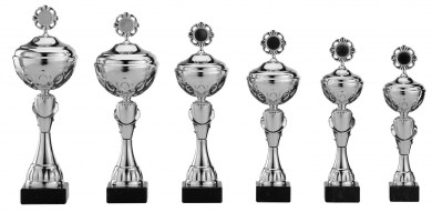 Pokale 6er Serie S484 silber mit Deckel 31 cm