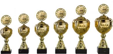 Pokale 6er Serie S456 gold mit Deckel 26 cm