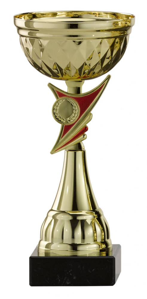 Pokale 6er Serie S478 gold 20 cm